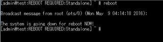 F5 BIG-IP reboot